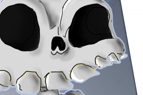 esqueletocolor-insta-v021F0AD8EB-CE4D-6D42-BED8-C0A3E18A47BF.png
